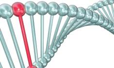 o-cancer-pode-ser-hereditario+ihoc