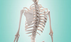 cirurgia-na-coluna-mais-beneficios-menos-riscos pablo-sobreiro