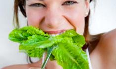 hidroponicos+organicos+agosto_2012