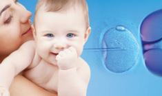 maternidade-planejada+embryo